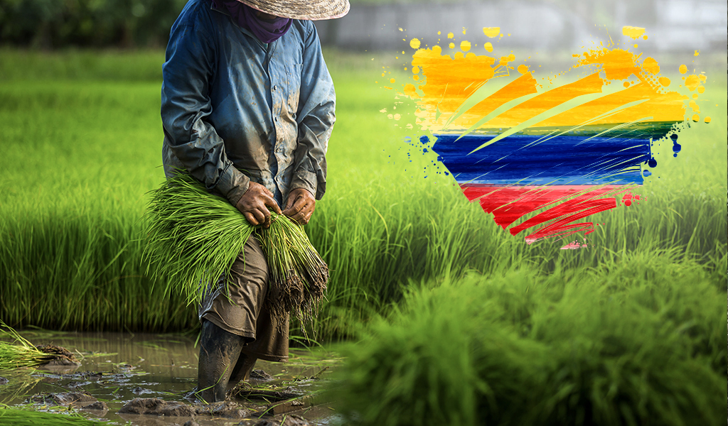 Los auténticos héroes colombianos