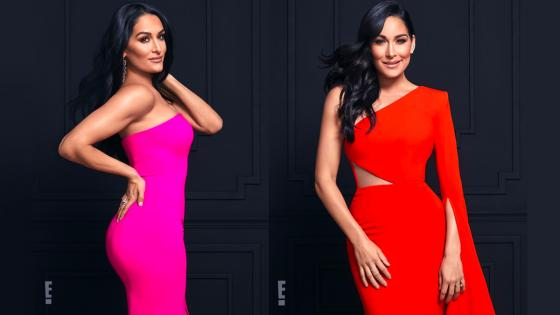 nikki y brie bella en total bellas