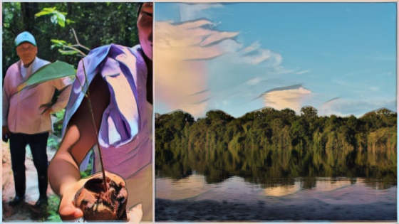 Saving The Amazon: 8 años luchando por el Amazonas