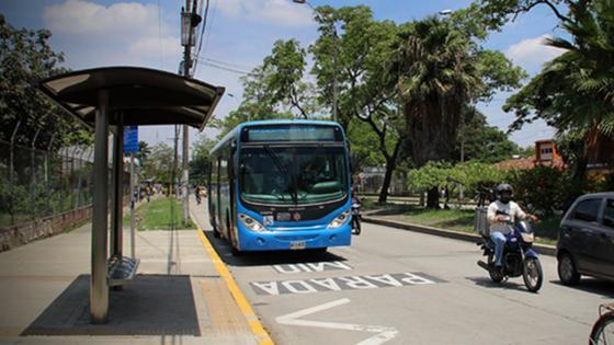 Bisturis Autobus
