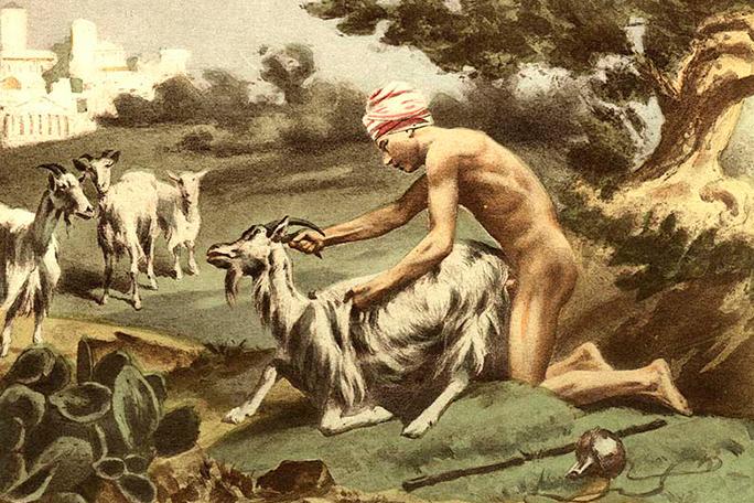 Resultado de imagen para imagenes sexo con animales