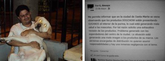 Epidemia está matando a los perros en Santa Marta