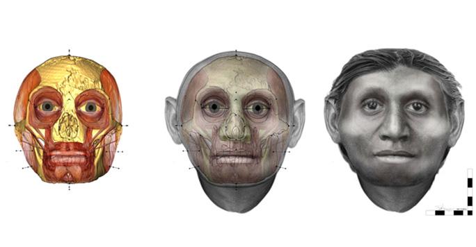 Cráneo de hobbit