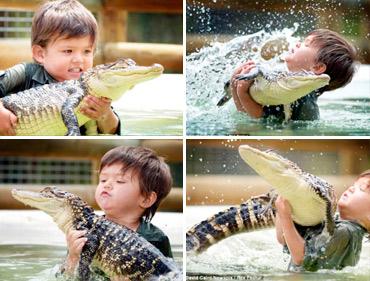 Domador cocodrilos