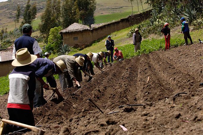 El Agro en Colombia