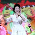 Peng Liyuan, Kienyke