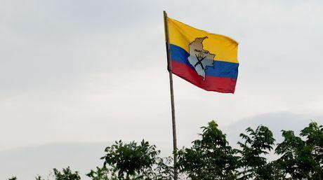 Capturada cabecilla del bloque sur de las FARC