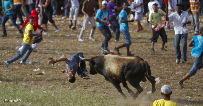 Ciudadanos de Arjona (Bolívar) decidirán futuro de corralejas