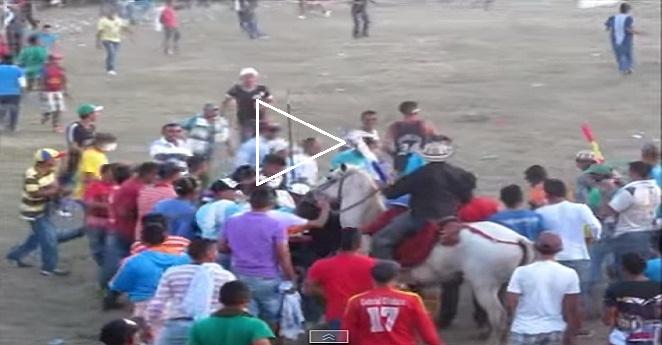 Nuevo escándalo: Descuartizan vivo a caballo en corralejas de Sucre