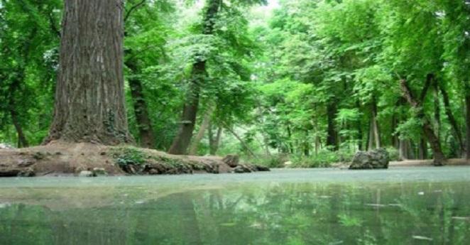 Colombia y Noruega firman un acuerdo económico para proteger la Amazonía