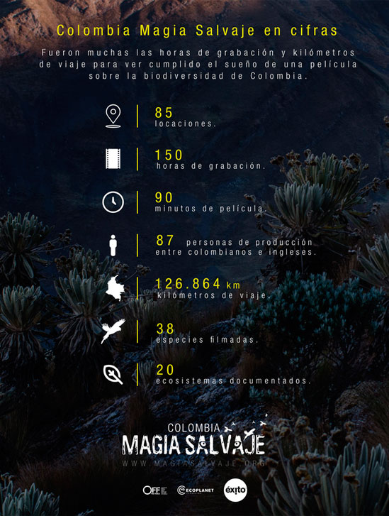 Cifras-Colombia-Majia-Salvaje