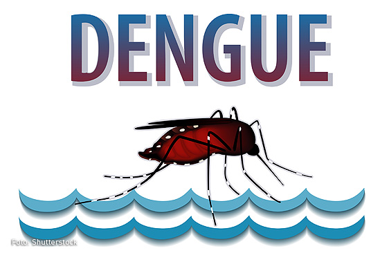 Dengue-01