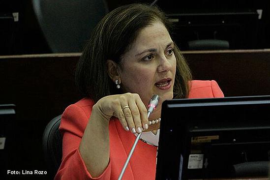 Maria-del-Rosario-Guerra-centro-democratico
