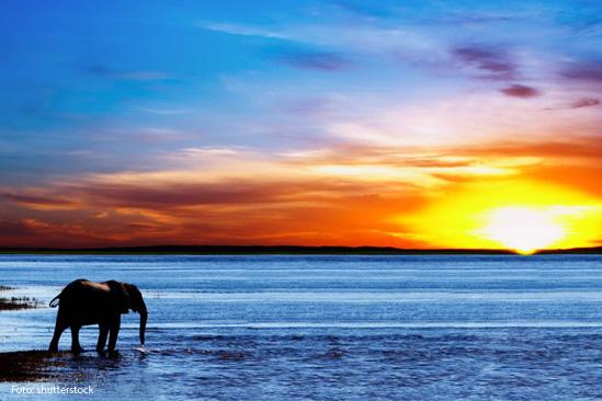 Botswana Shutterstock