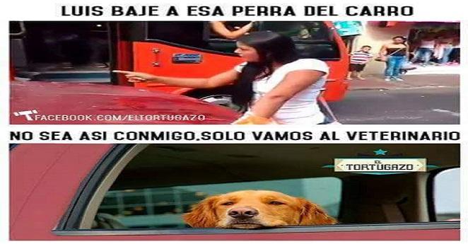 "Memes de bajen a la ""moza del carro"" inundan las redes sociales"