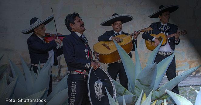 Unos mariachis y las Farc le costaron una millonada al Estado