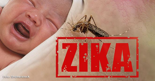 El Zika ya ha provocado parálisis en 83 personas en Colombia