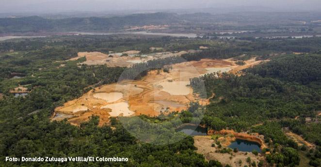 Fiebre de oro arrasa con el busque en el Bajo Cauca antioqueño