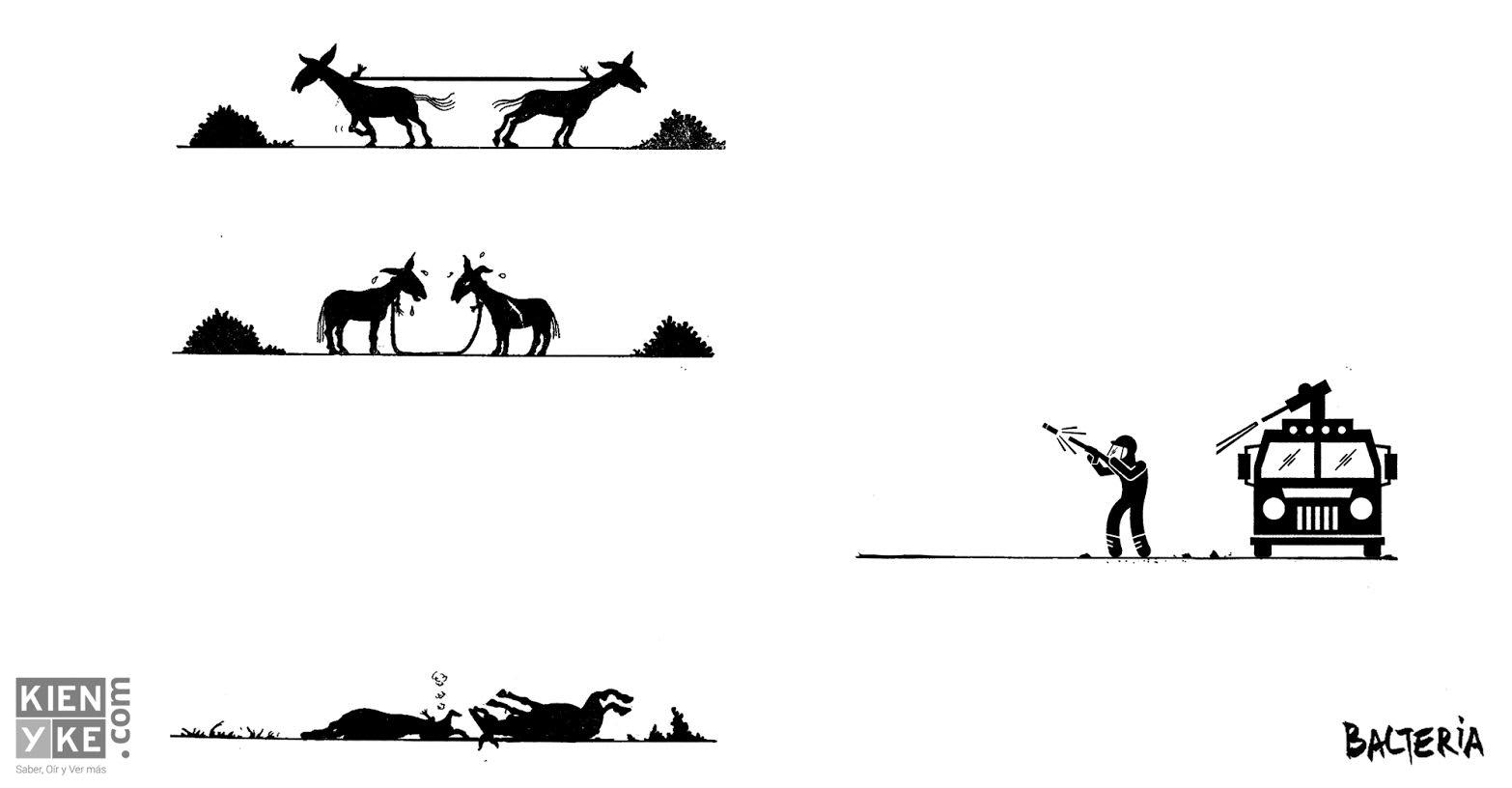 Paro de mulas