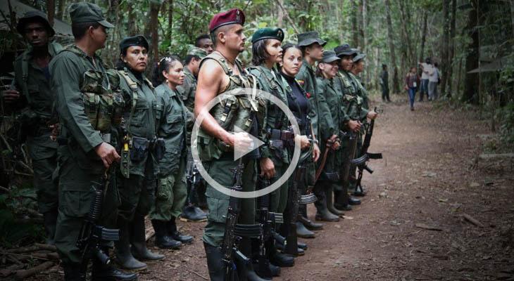 En vivo: Entrega de armas por parte de las Farc