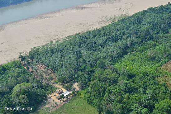 extinción de domino a FARC 3