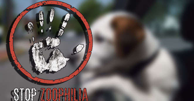 zoofilia-p