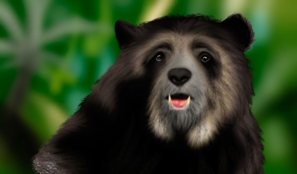 Los osos se comunican a través del olor de sus patas