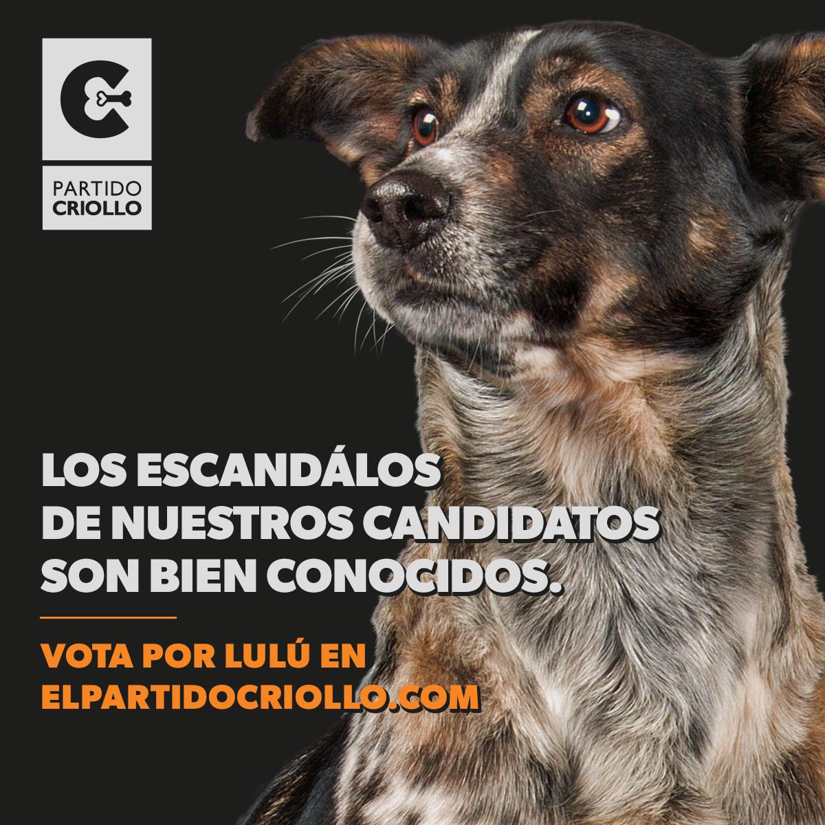 """El Partido criollo: una colectividad de """"políticos diferentes"""""""