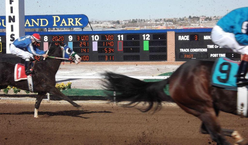 ¿Qué hay tras el mundo de las carreras de caballos Pura Sangre?