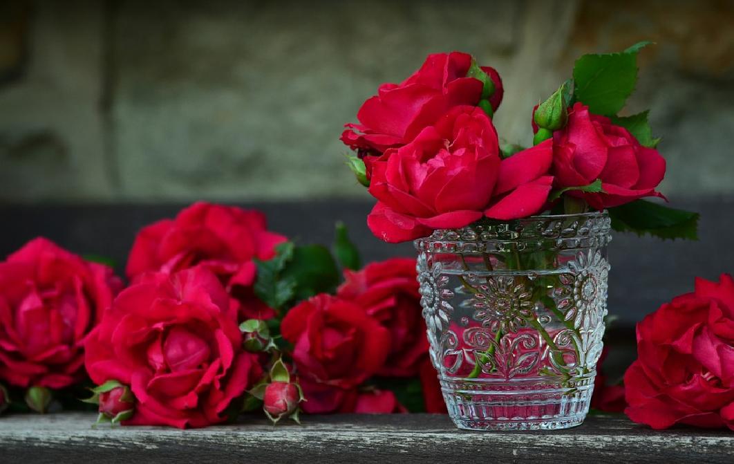 Ecuador produce las mejores rosas del mundo