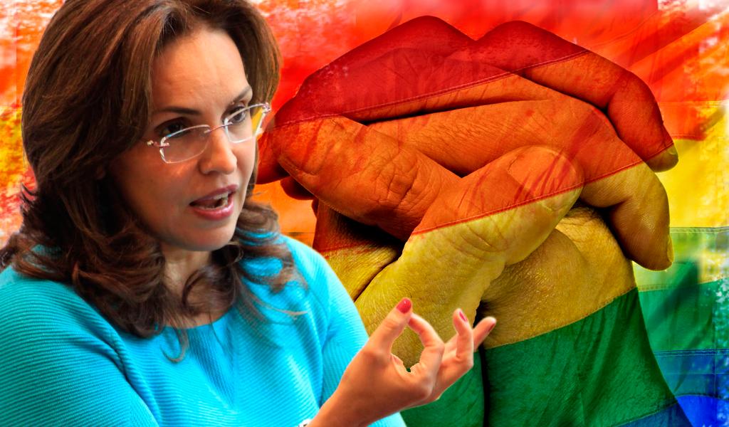 Se hunde referendo para prohibir adopción gay