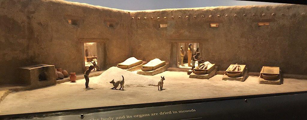 Foto: Field Museum por Salua Kamerow