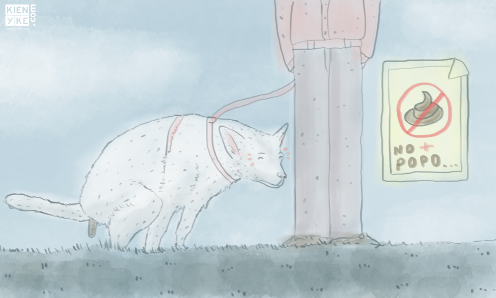 Duras sanciones a quienes no recojan heces de sus mascotas