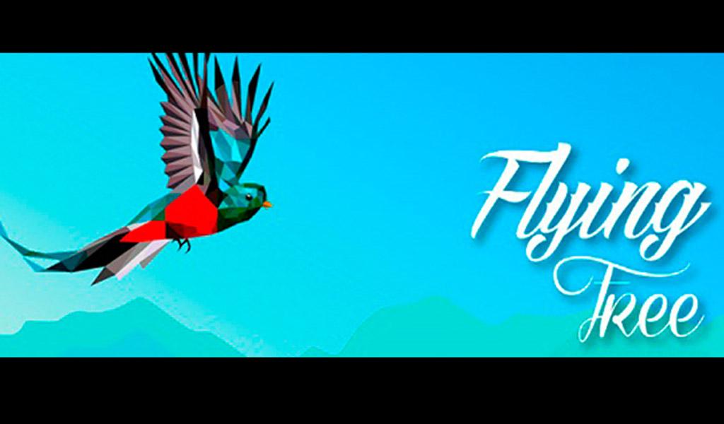 Flying Free un juego virtual que ayuda a proteger aves