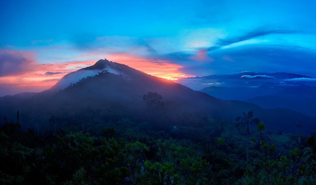 Colombia y su estrategia para combatir el cambio climático
