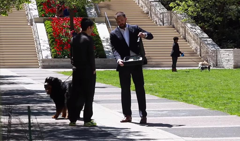 ¿Vendería a su perro por 100.000 dólares?
