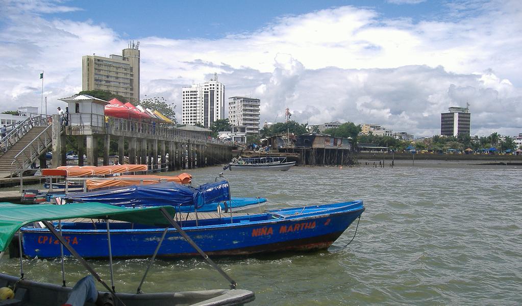 Cuatro disidentes muertos en operativo de la Armada