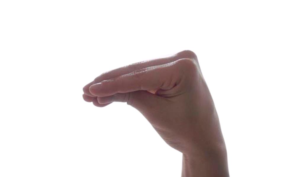 Fisting-vaginal