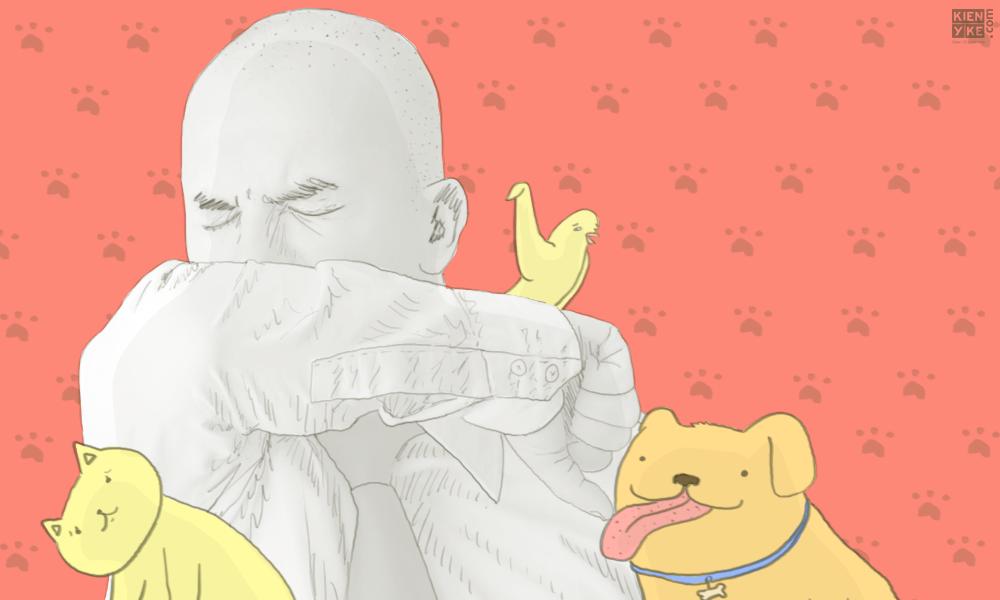 ¿Qué se puede hacer si tiene alergia las mascotas?