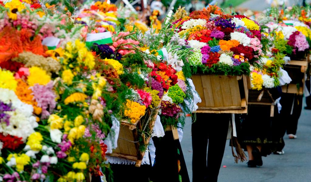 Gobierno aumentó inversión en comercialización de flores