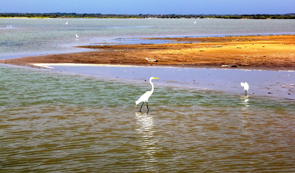 Gobierno anuncia la creación de Mesa Ambiental para la Guajira