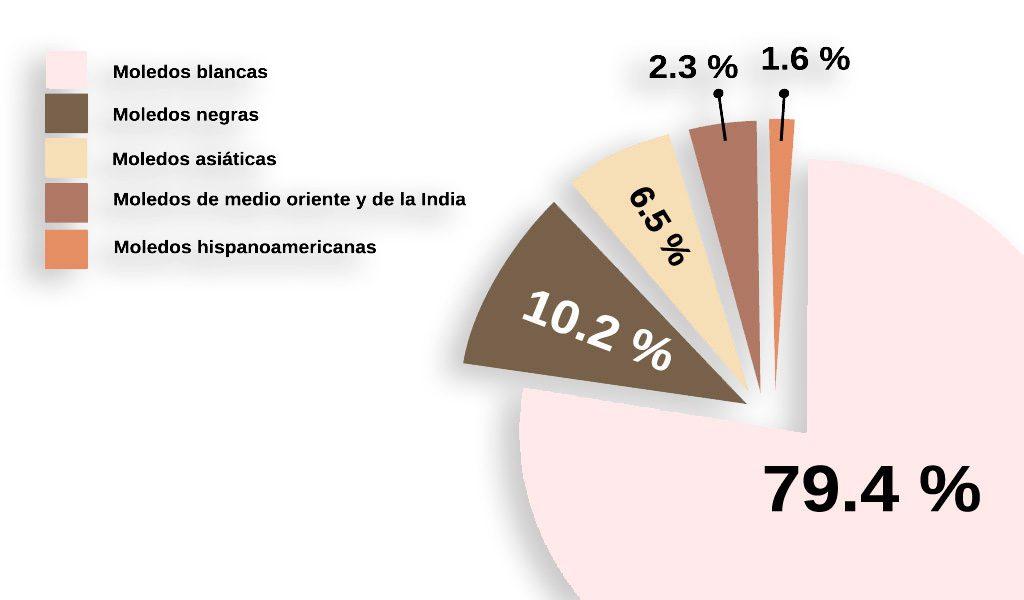 pie-chart-modelos-grafico