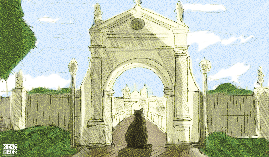 El misterio de los gatos del cementerio de Mompox