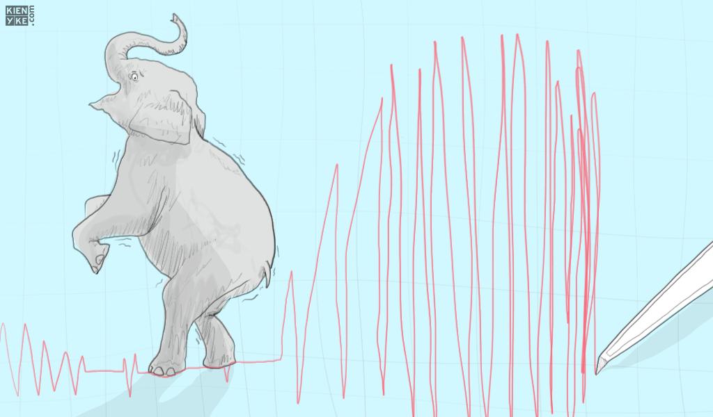 Animales que pueden predecir desastres naturales