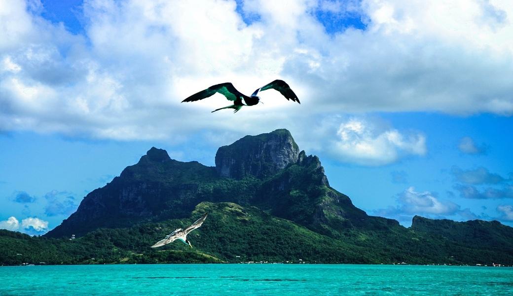 ¿Sabe usted qué es la Polinesia?