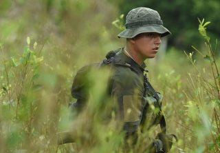 Mayoría de fondos de EE. UU. en Colombia serán para la paz