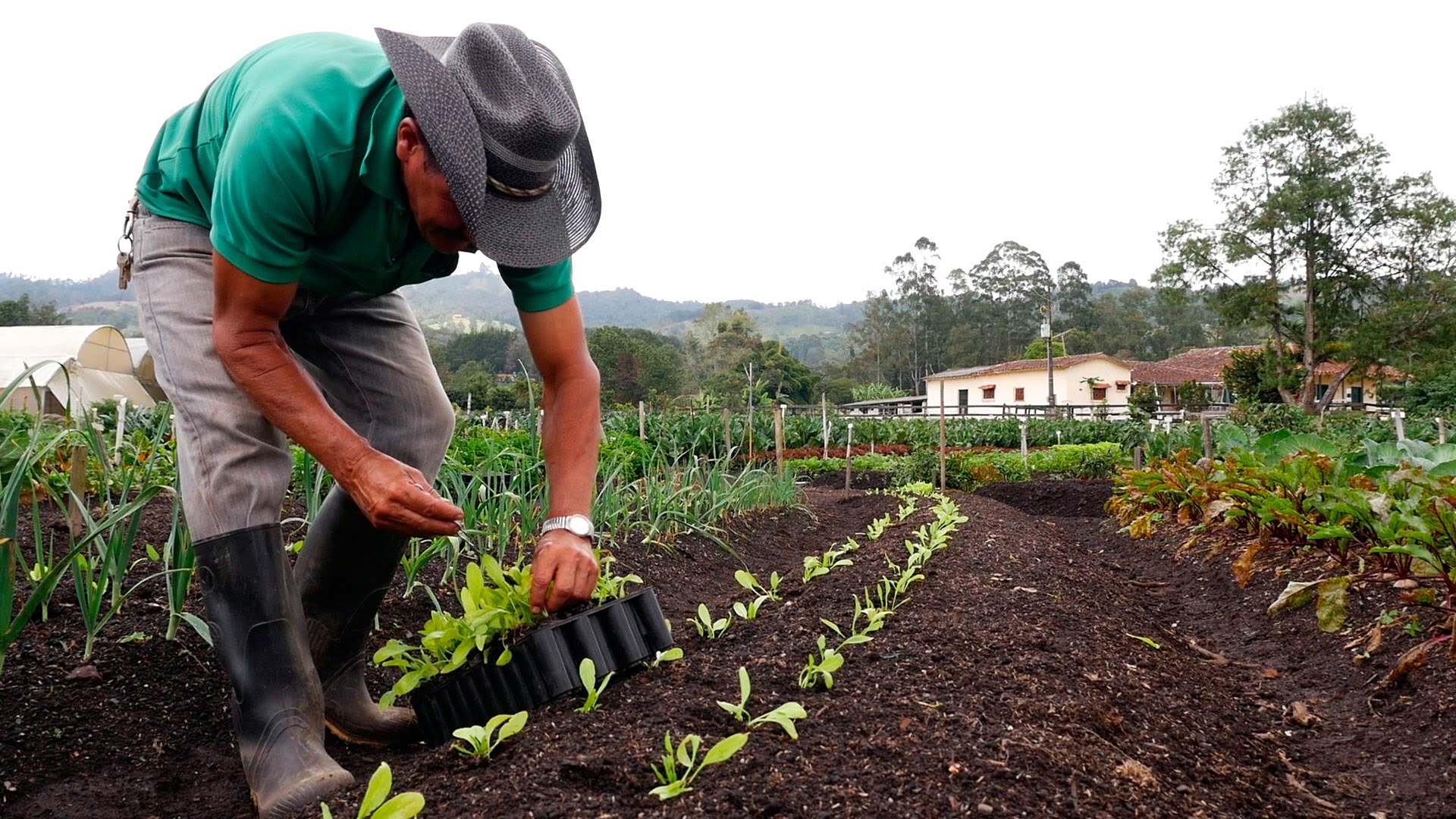 Antioquia firmó convenio para la Colonia Penal Agrícola