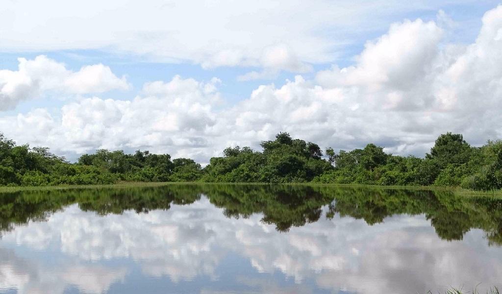 Dos ciénagas se suman a las áreas protegidas del país