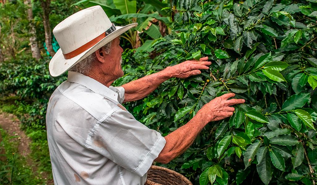 Italia invertirá un millón de dólares en Antioquia