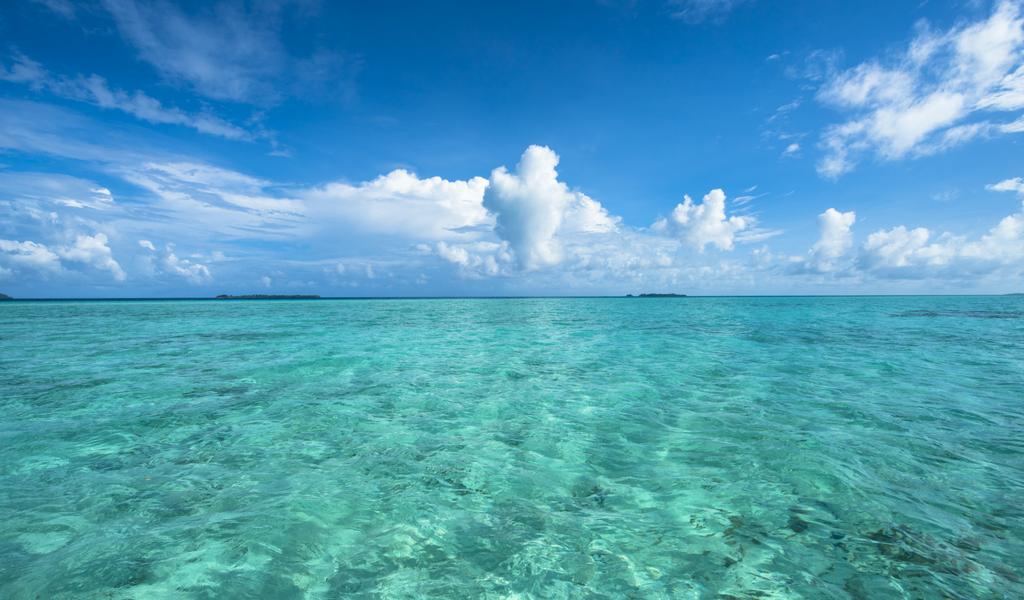Recomendaciones para cuidar los océanos